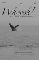 Whoosh! The Zine for Whale Lovers Cover